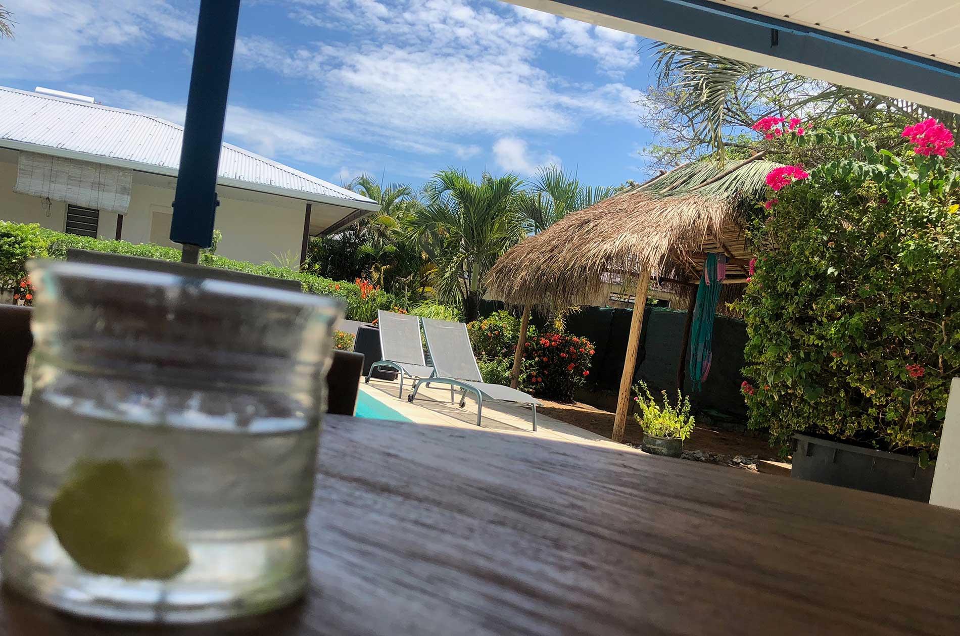 Très belle vue du jardin avec carbet à hamacs, piscine et chaise longue depuis la table haute qui est sur la terrasse. Le ciel bleu surplombe magnifiquement la végétation (bougainvillier et palmiers)